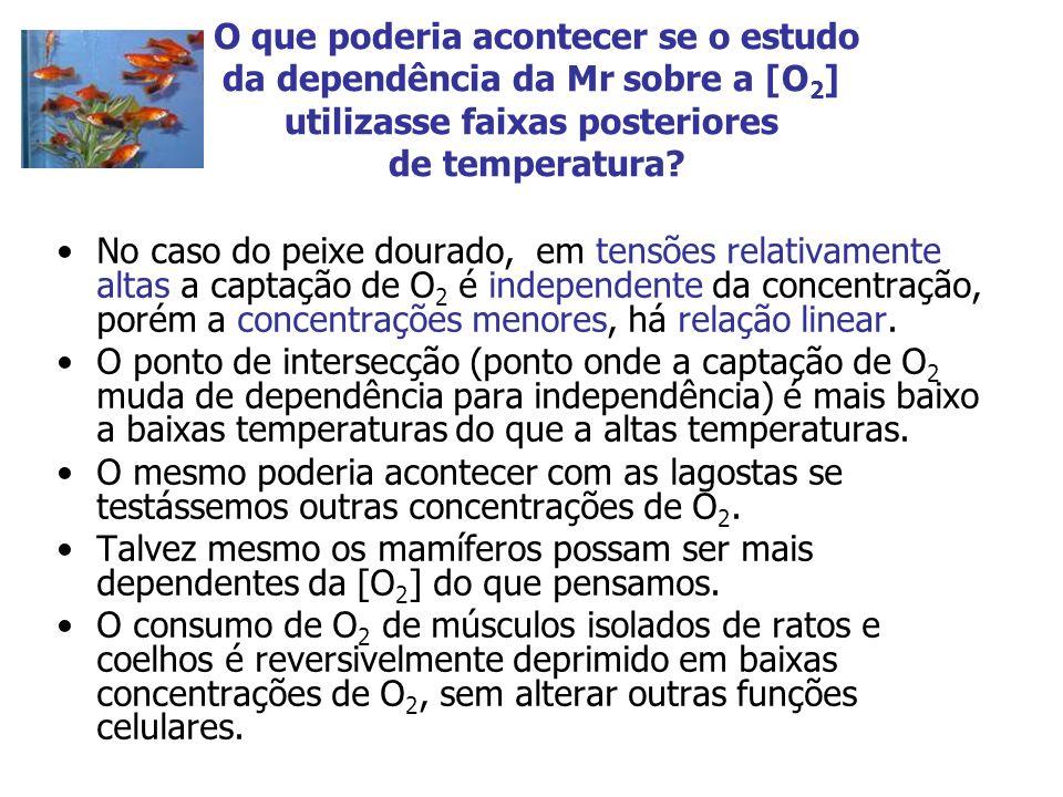 O que poderia acontecer se o estudo da dependência da Mr sobre a [O2] utilizasse faixas posteriores de temperatura